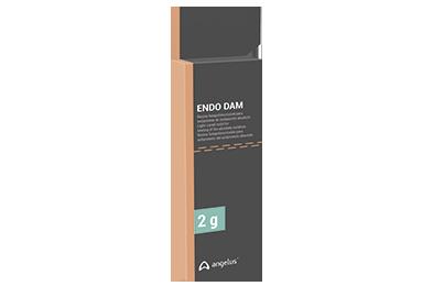 Endo Dam