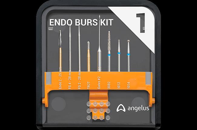 Endo Burs Kit